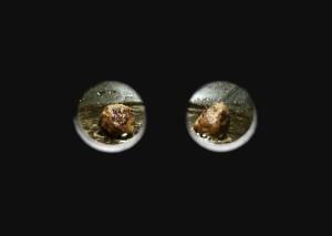 Matousch_Meat_Balls